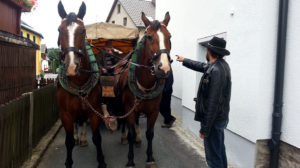 Pferdekutschfahrt in Bärenstein